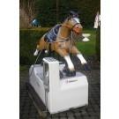 Holland Pferd