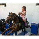 Ode Pferd Dunkelbraun